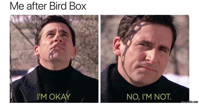 Me after bird box Im okay no Im not meme