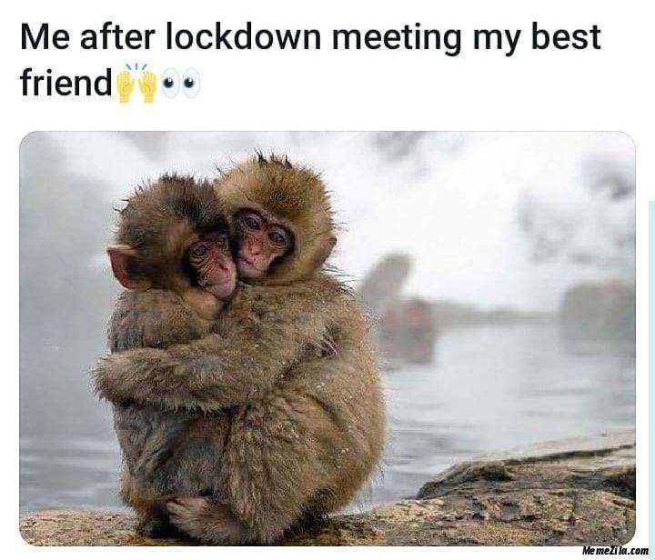 Me after lockdown meeting my best friend meme