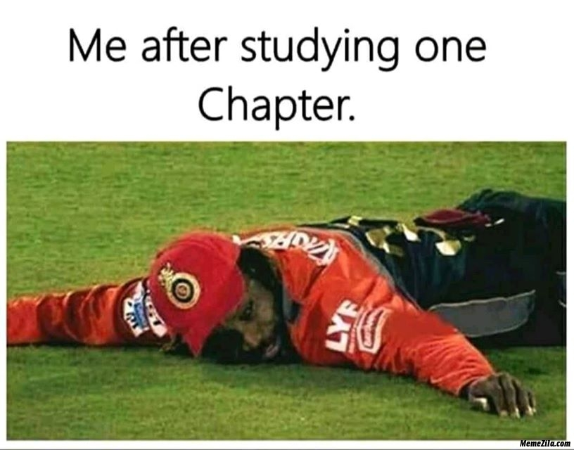 Me after studying one chapter meme