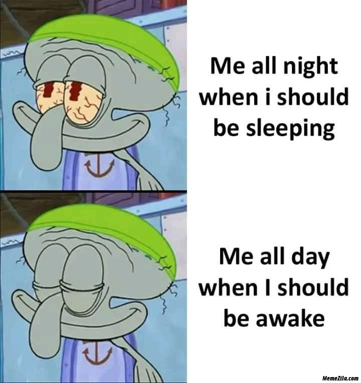 Me all night when I should be sleeping Me all day when I should be awake meme