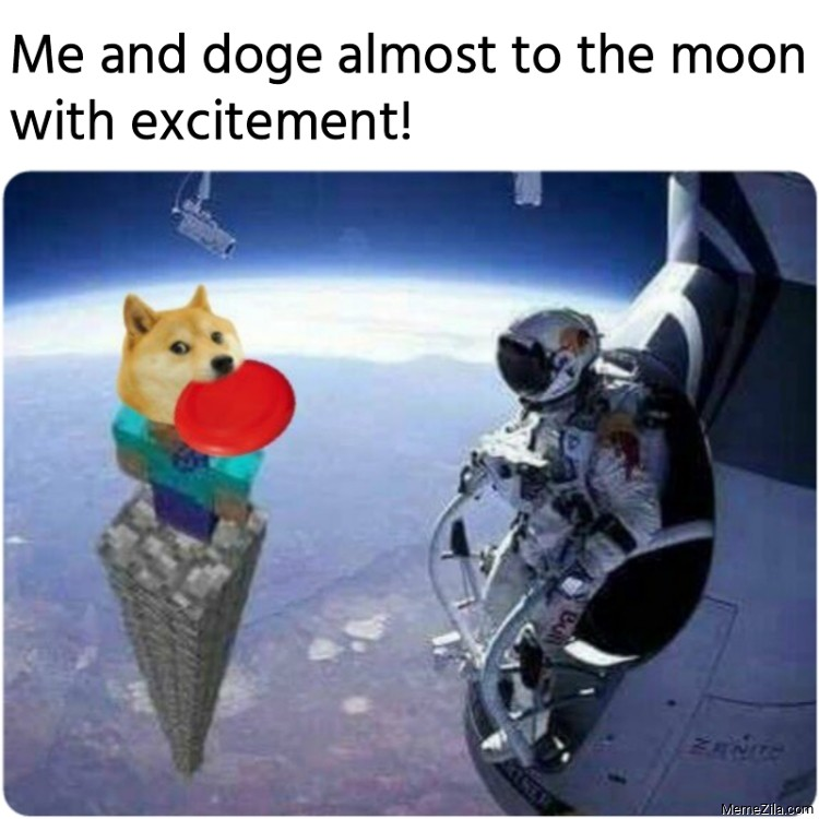 Me and doge almost to the moon with excitement meme