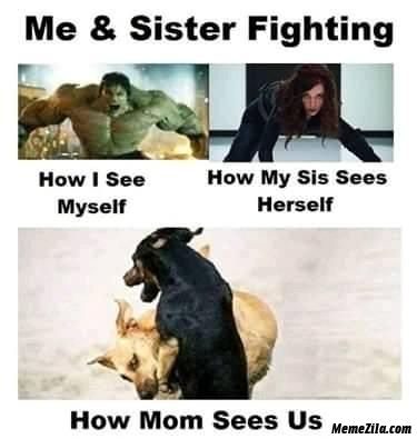 Me and sister fighting meme