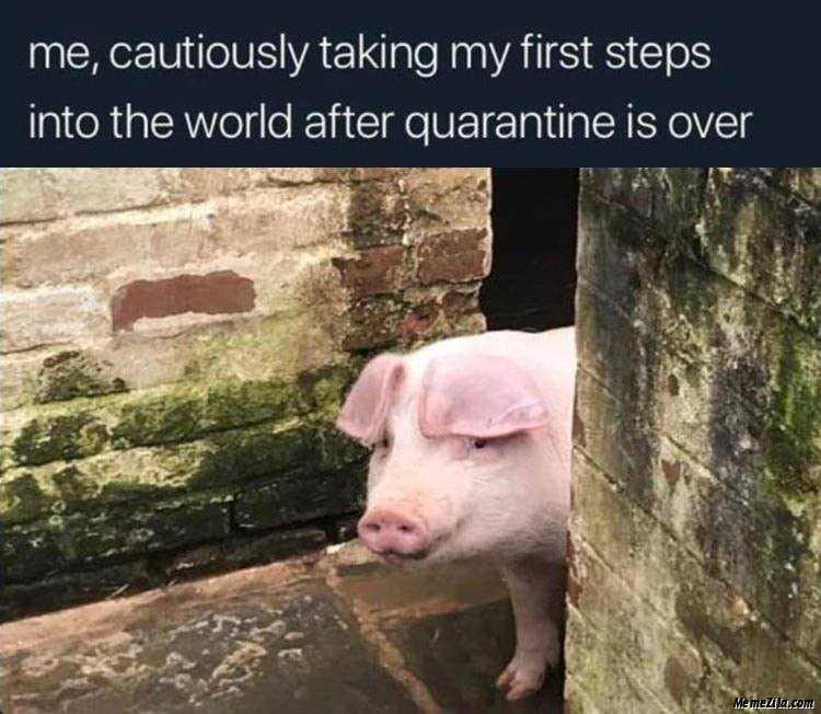 Me cautiously taking my first steps into the world after quarantine is over meme