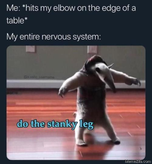 Me hits my elbow on the edge of a table Do the stanky leg meme