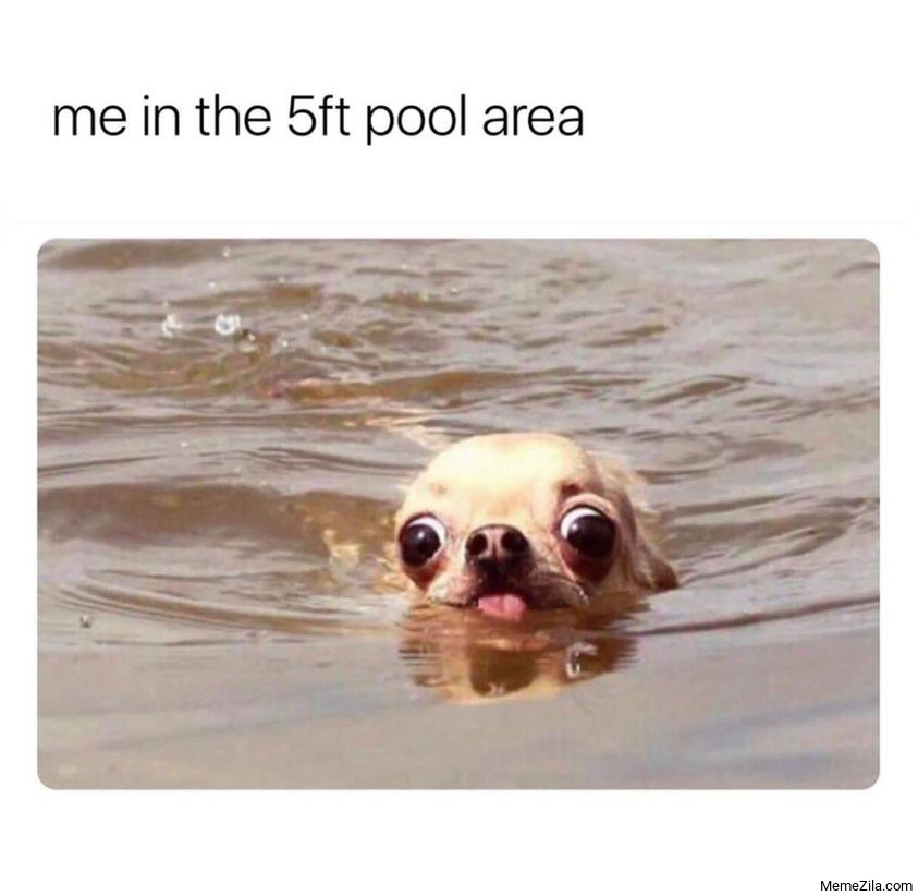 Me in the 5ft pool area meme
