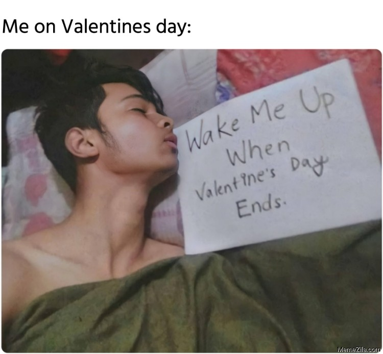 Me on Valentines day Wake me up when the Valentines day ends meme