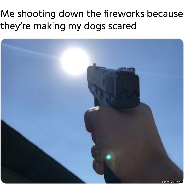 Me shooting down the fireworks because they are making my dogs scared meme