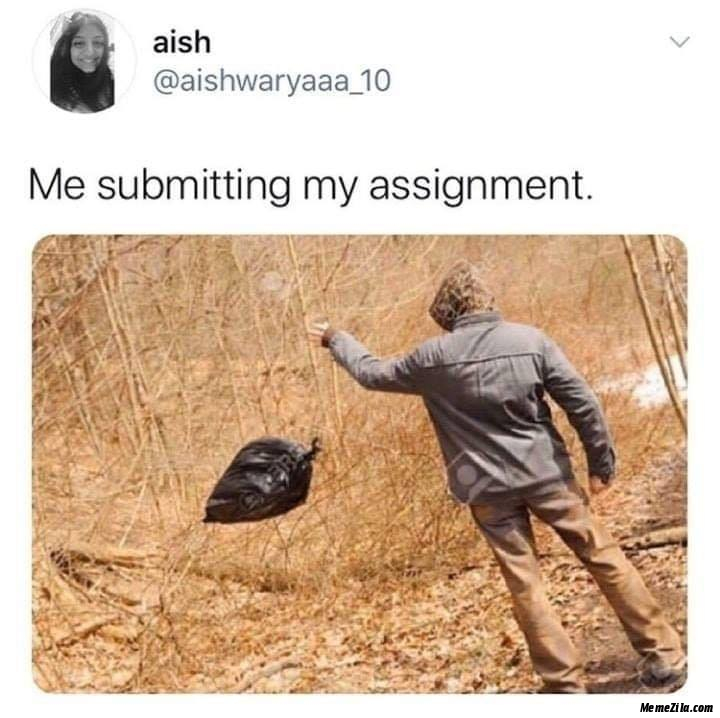 Me submitting my assignment meme