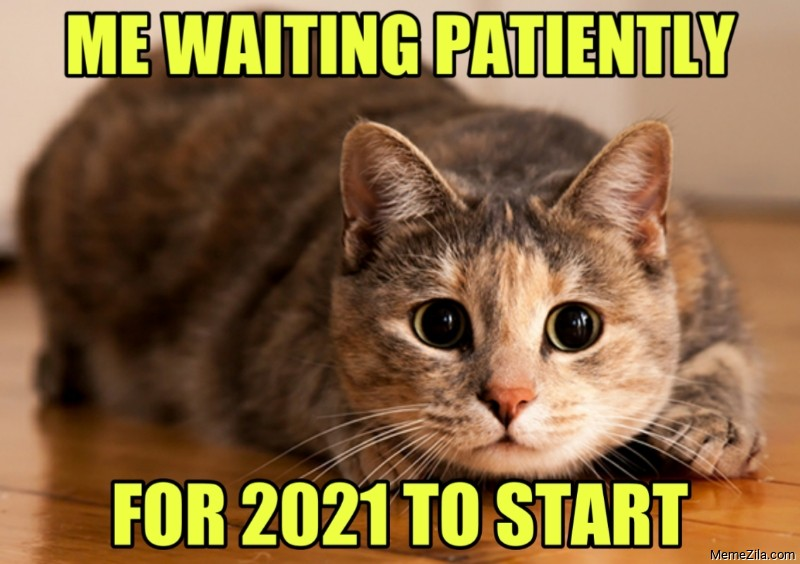 Me waiting patiently for 2021 to start meme