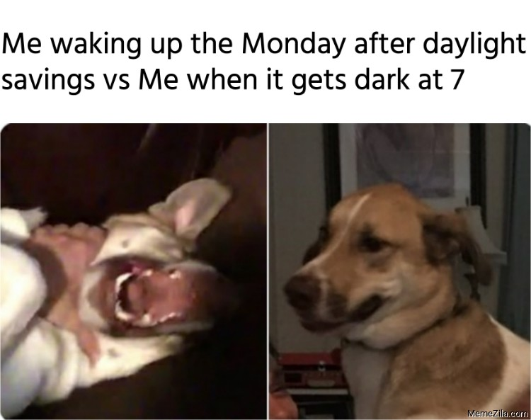 Me waking up the Monday after daylight savings vs me when it gets dark at 7 meme