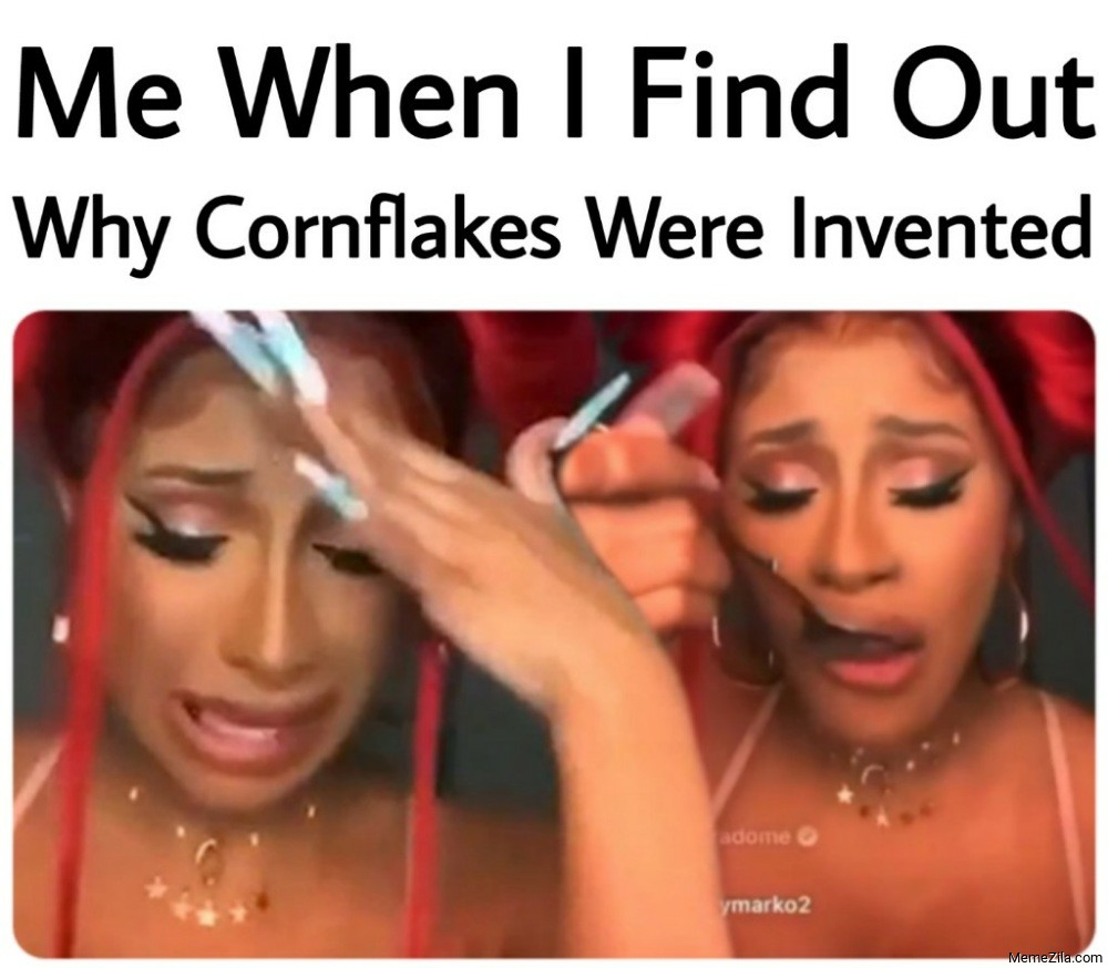 Me when I find out why were  cornflakes invented meme
