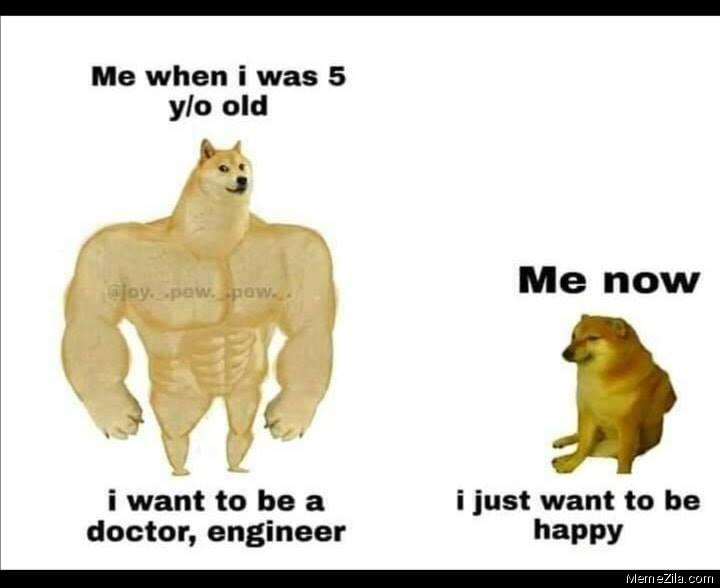Me when I was 5 yo old vs Me now meme