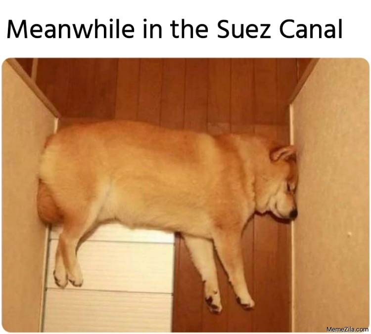 Meanwhile in the Suez Canal meme