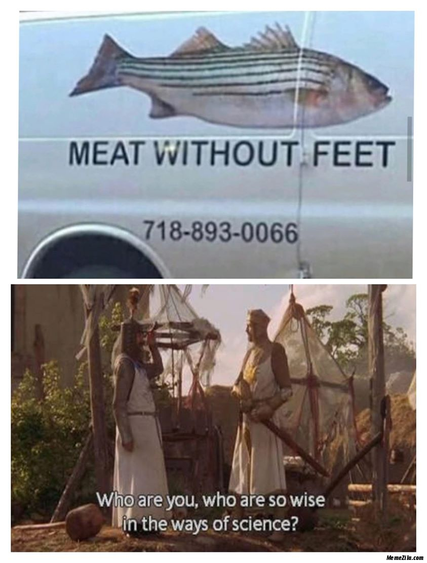 Meat without feet Who are you Why are so wise in the ways of science meme