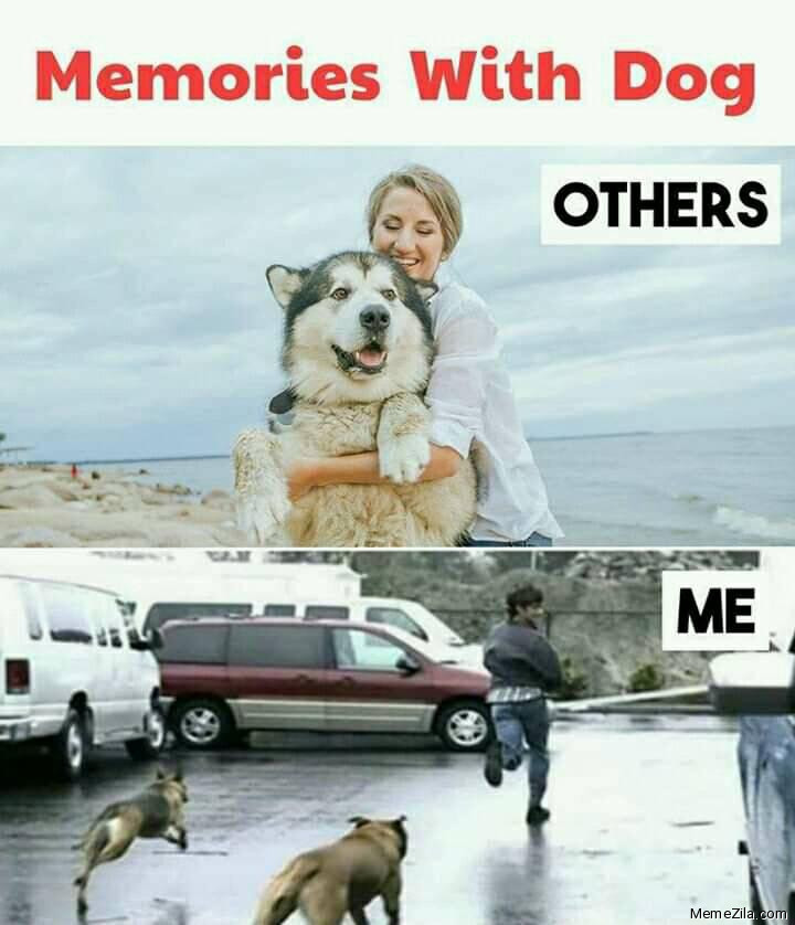 Memories with dog Others vs me meme