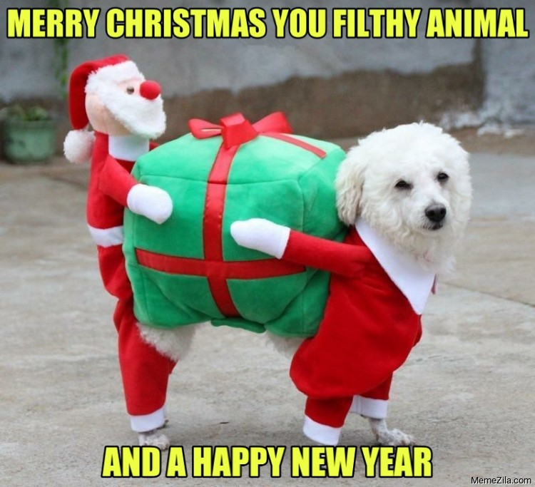 Merry christmas you filthy animal and a happy new year meme