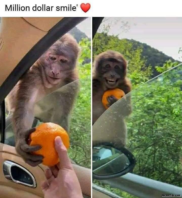 Million dollar smile meme