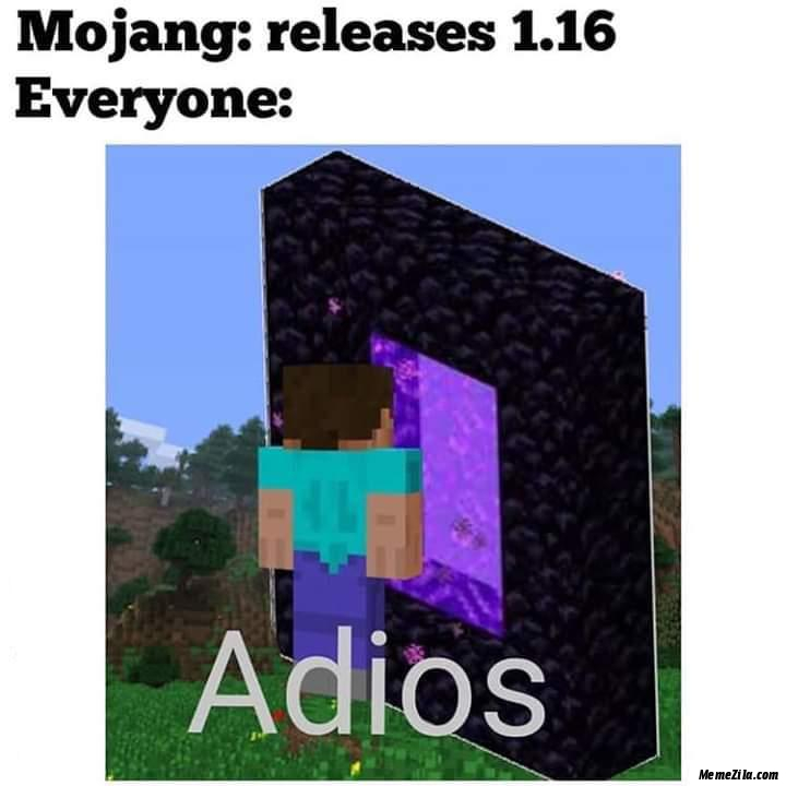 Mojang releases 1.16 Everyone now adios meme