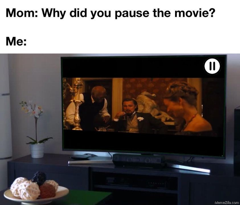 Mom Why did you pause the movie Meanwhile me meme