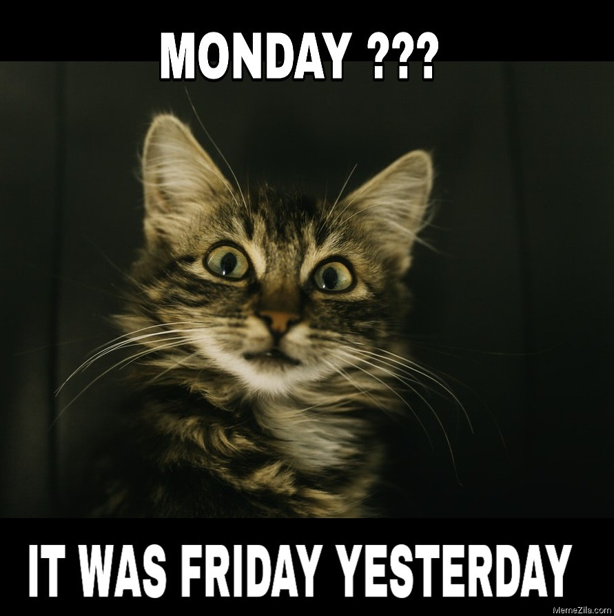 Monday It was friday yesterday meme