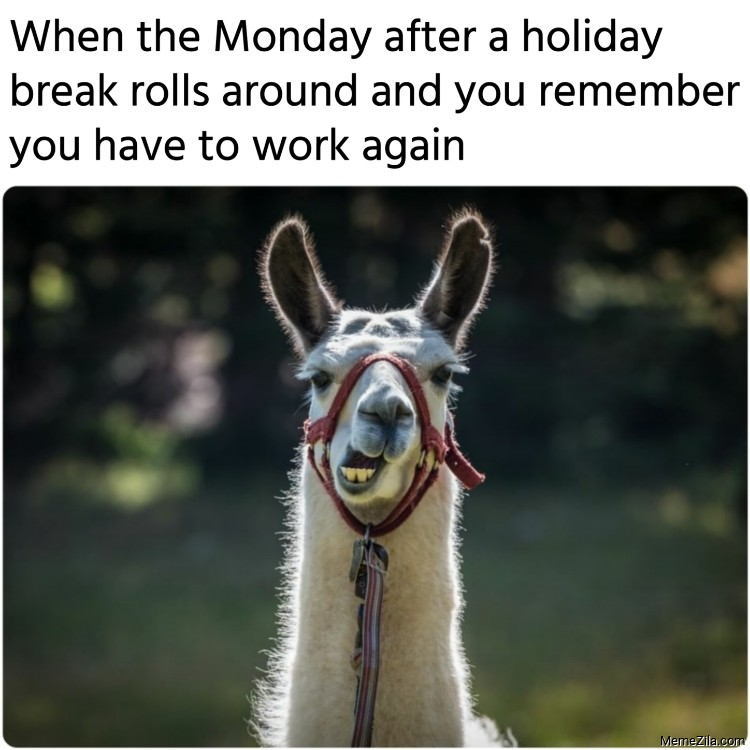 Monday after a holiday break rolls around and you remember you have to work again meme