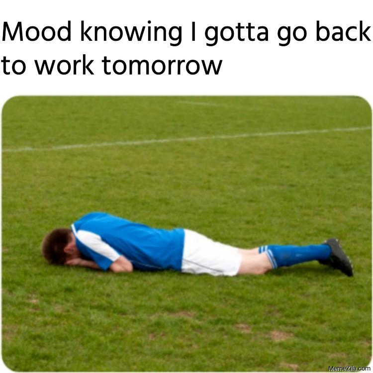 Mood knowing I gotta go back to work tomorrow meme