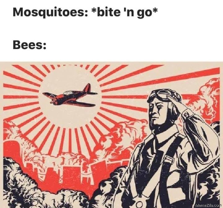 Mosquitos bite n go Meanwhile bees meme