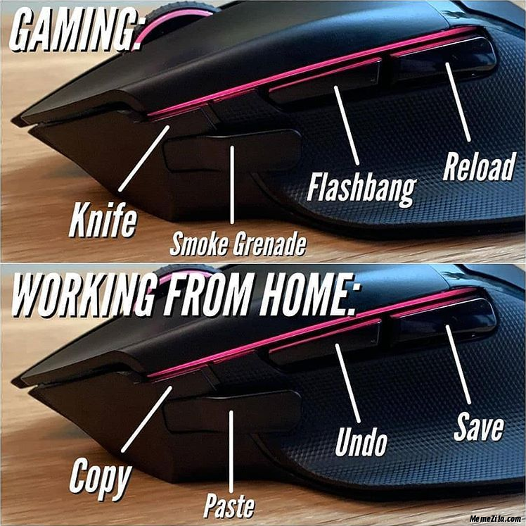 Mouse while gaming vs working from home meme