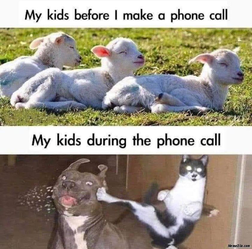 My kids before I make a phone call My kids during the phone call meme