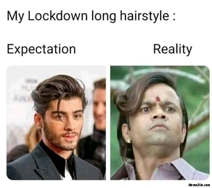 My lockdown long hairstyle Expectation vs reality meme