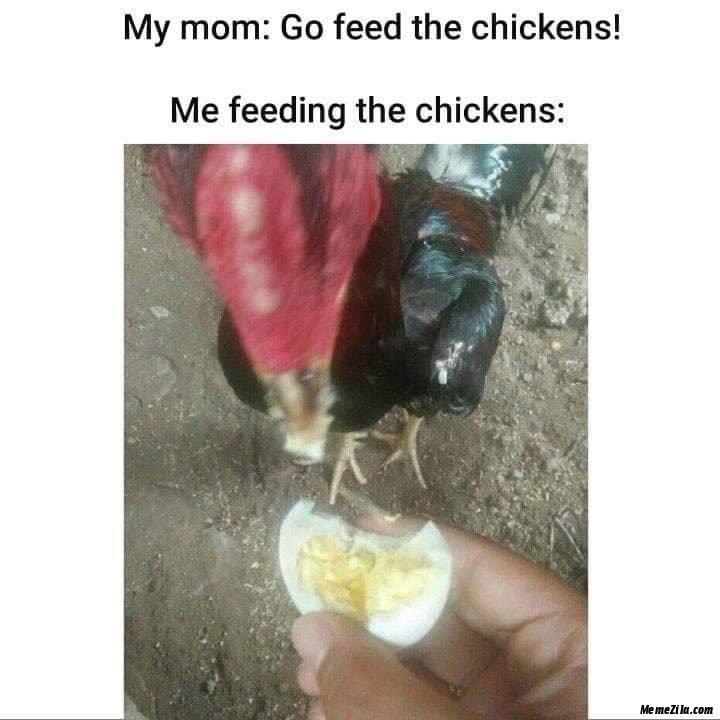 My mom Go feed the chickens Me feeding the chickens meme