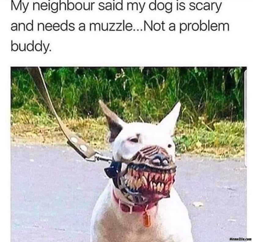 My neighbour said my dog is scary and needs muzzle Not a problem buddy meme