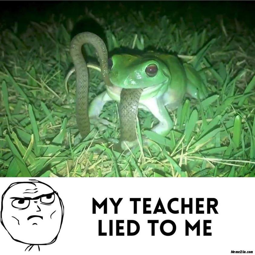 My teacher lied to me Frog eating snake meme
