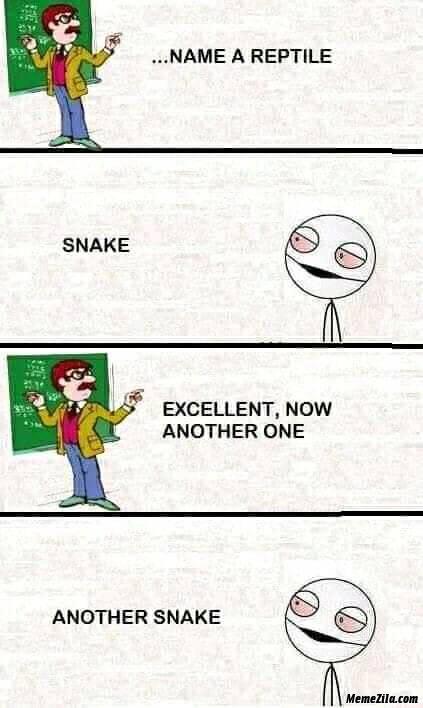 Name a reptile meme