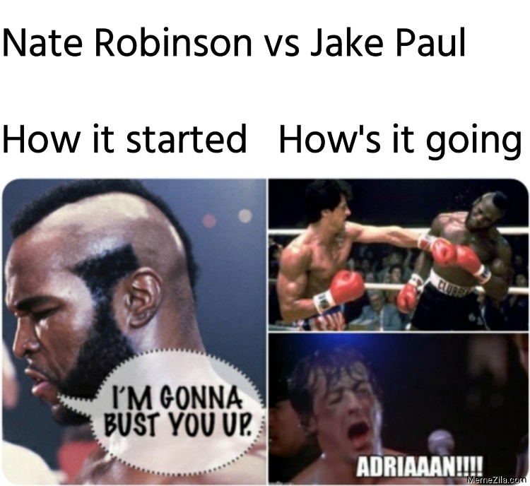 Nate Robinson vs Jake Paul How it started Hows it going meme