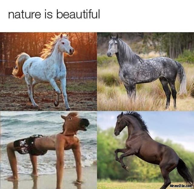Nature is beautiful horse meme