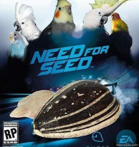 Need for seed meme