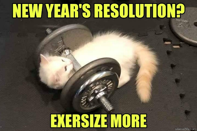 New years resolution Exersize more meme