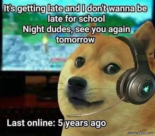 Night dudes see you again tomorrow Last online 5 years ago meme