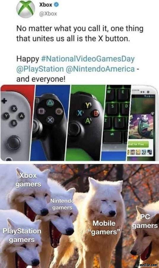 No matter what you call it One thing that unites all us is X button meme