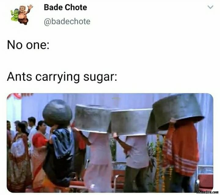 No one Ants carrying sugar meme
