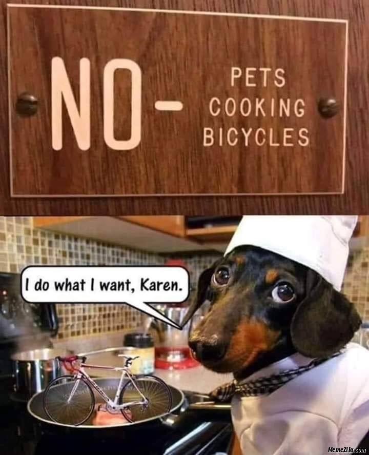 No pet cooking bicycles I do what I want Karen mean
