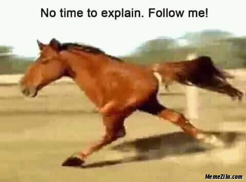 No time to explain Follow me meme