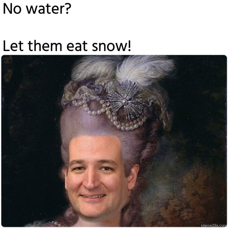 No water Let them eat snow meme
