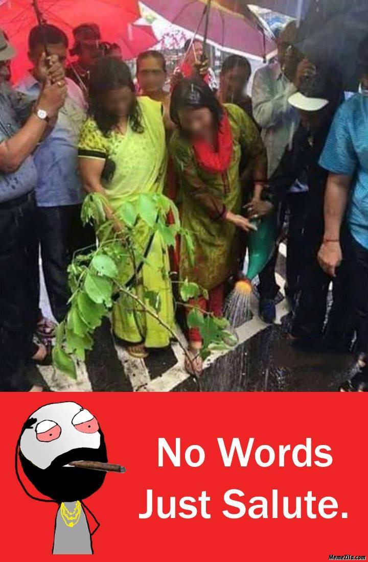 No words just salute meme