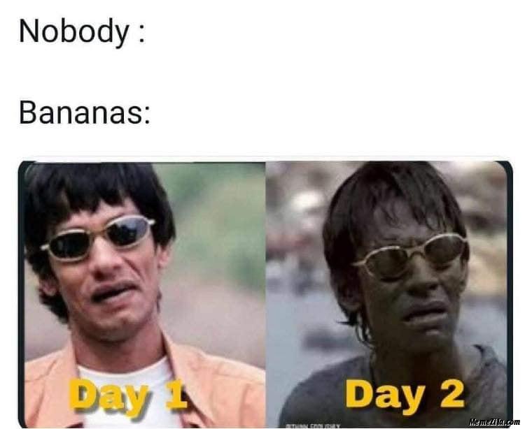 Nobody Bananas Day 1 vs Day 2 meme