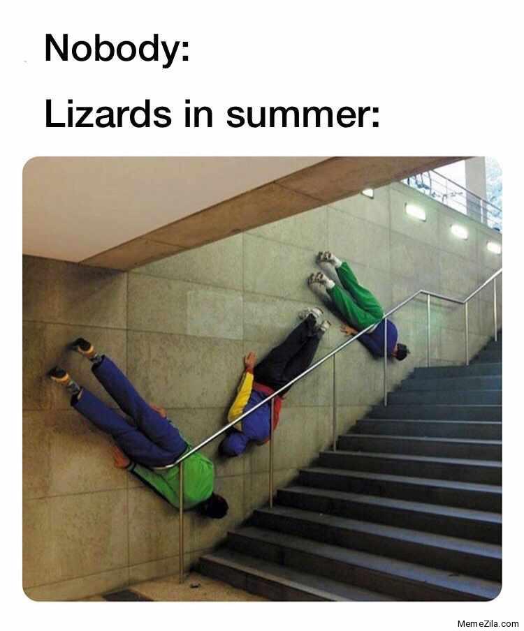 Nobody Lizards in summer meme