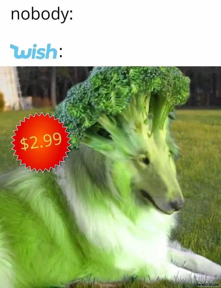 Nobody Wish $2.99 meme