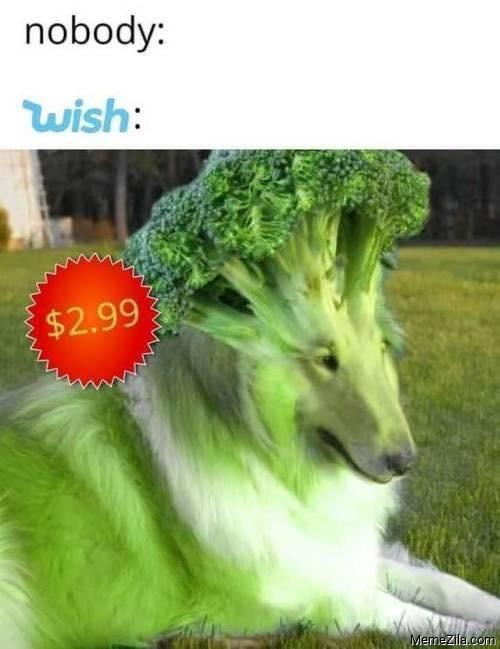 Nobody Wish Broccoli dog meme