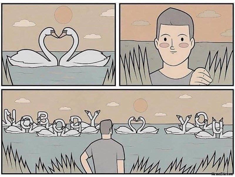 Nobody love you ducks meme